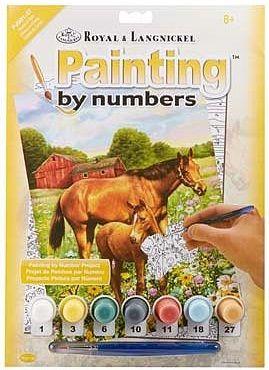 R&L USA  A4 #  HORSE IN FIELD - Рисуване по номера  PJS81