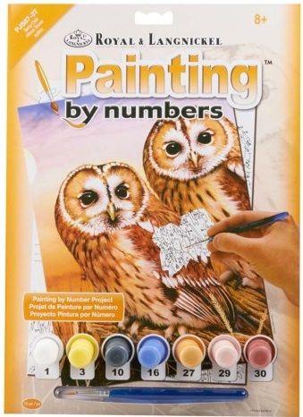 R&L USA  A4 #  TAWNYOWLS - Рисуване по номера  PJS87