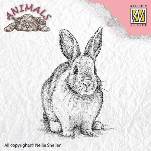 "Animals ""rabbit"" ANI012  - Дизайн прозрачен печат"