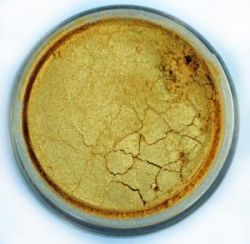 COSMIC SHIMMER MICA pigment  - PALE GOLD